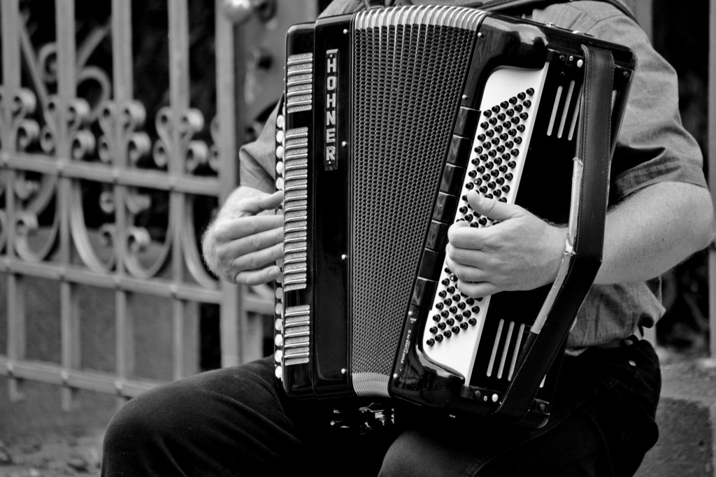 accordion-musical-instrument-handzuginstrument-musician-163823